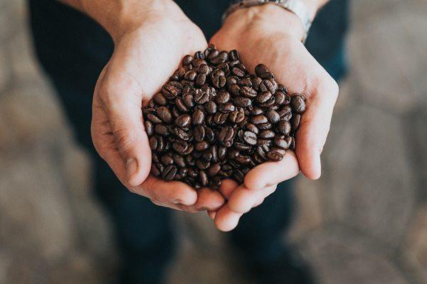 コーヒーの産地によって味と特徴はどう違う?