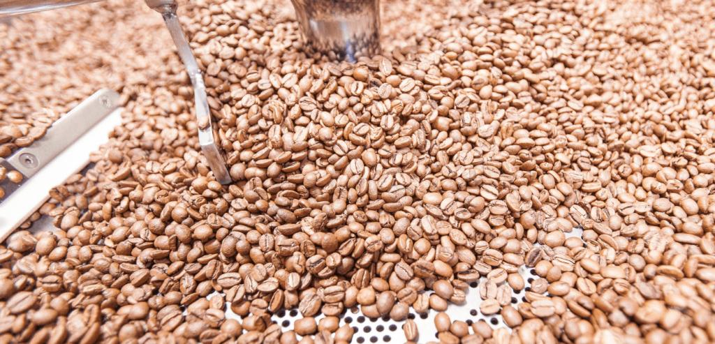 焙煎直後のコーヒー豆